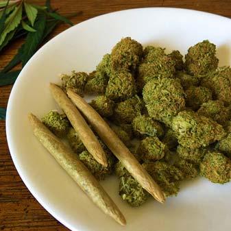 Cannabis Marijuana Nugs Buds Dank Chronic Joint Photo