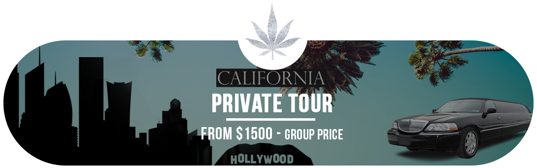 Private Tour