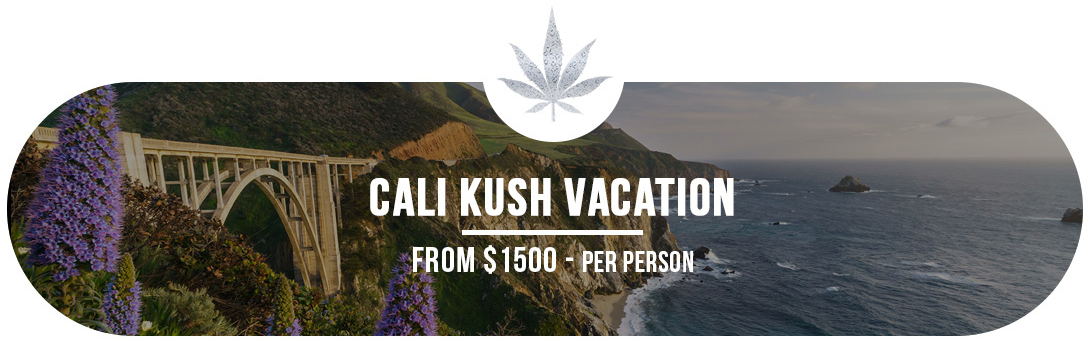 Cali Kush Vacation