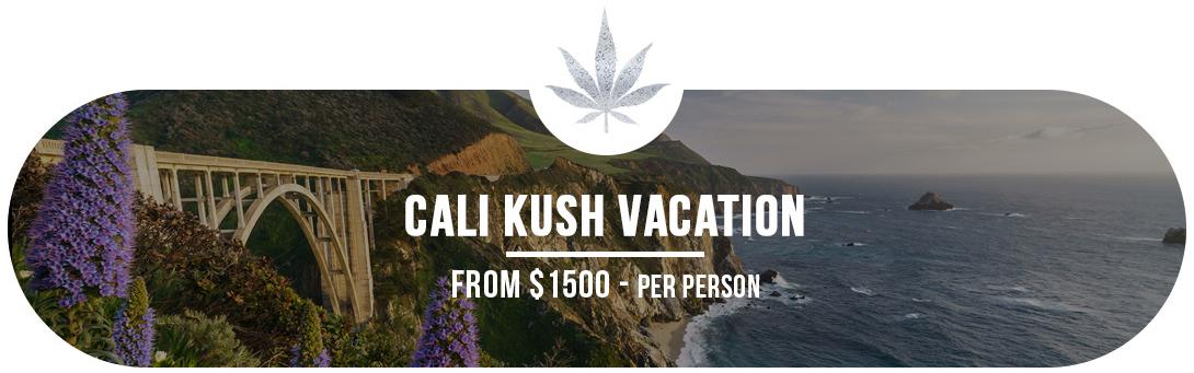 Cali Kush Vacation